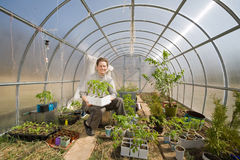 Old woman in greenhouse looking after plants Stock Photography