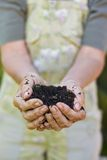 Old woman with a handful of compost. Closeup image of old woman hands holding compost. Senior female hands holding a handful of peat free compost royalty free stock photo