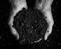 Old woman hands holding fresh soil. Symbol of spring Royalty Free Stock Image