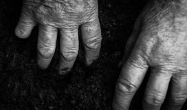 Old woman hands holding fresh soil. Symbol of spring. And ecology concept Royalty Free Stock Photography