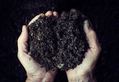 Old woman hands holding fresh soil. Symbol of spring. And ecology concept Stock Photography