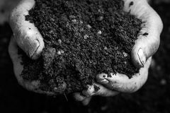 Old woman hands holding fresh soil. Symbol of spring and ecology concept. Black and white with strong contrast Royalty Free Stock Photos
