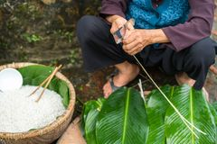 Old woman hands preparing to make Chung Cake, the Vietnamese lunar new year Tet food stock photography