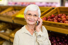Old woman having a phone call Stock Image