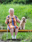 Old woman and her dog. Sitting on a park bench Stock Photography