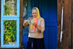 The old woman is holding money in her hands. An elderly woman with dollars in her hands royalty free stock photos
