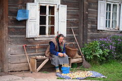 Old woman preparing harvest for winter. Old woman preparing beans, onions and garlics for winter in Lithuanian countryside Stock Photo