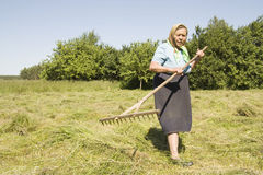 The old woman with a rake Stock Photos