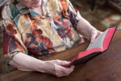 Old woman reading a book Stock Photos