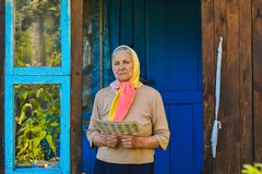 The old woman is reading the newspaper. stock photo