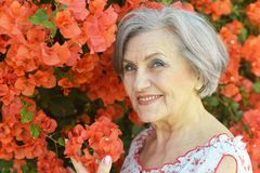 Old woman with red flowers Stock Images
