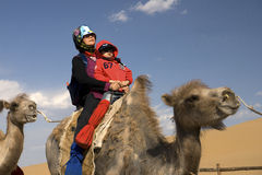 The old woman ride a camel Stock Image