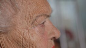 Free Old Woman`s Face Close-up, Side View. Skin With Old Wrinkles. Royalty Free Stock Photos - 200535048