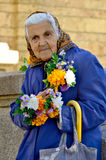 Old woman selling flowers Stock Image