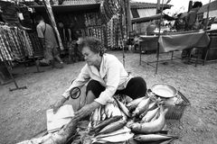 Old woman selling salted Stock Images