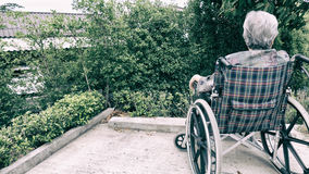 Old woman sitting alone in a wheelchair out in the garden. Royalty Free Stock Photo