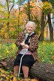 Old woman sitting on a log. Portrait of old woman sitting on a log  in autumn park Stock Photos