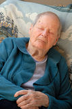 Old woman sleeping. Senior womat has a catnap in the arm chair Royalty Free Stock Photography