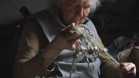 Old woman with sore hands knits knots on a rope to lower a bucket into a well, life in an abandoned village. Selective focus stock video