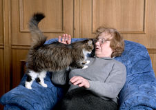 The old woman stroke a cat. The old woman sits in an armchair and stroke a cat Royalty Free Stock Photo