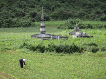 Ancient graves in vietnam Stock Image