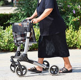 Old woman with a walker Royalty Free Stock Photo