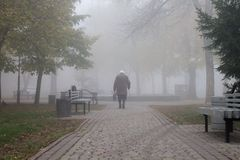 Old woman walking through the park on a foggy day in autumn royalty free stock image