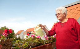Old woman watering flowers. On the balcony stock photo