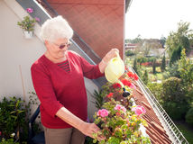 Old woman watering flowers Royalty Free Stock Photos