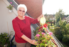 Old woman watering flowers. On the balcony stock photos
