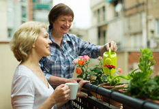 Old women on balcony with coffee Royalty Free Stock Photo