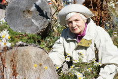 Old women with camomille. Old women with mountains camomille Stock Photography