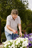 Old women gardening Royalty Free Stock Photography