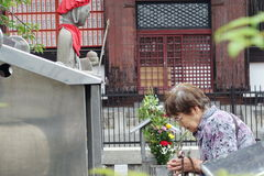 Old women respect belief by beautiful mind,Toji temple. Royalty Free Stock Photos