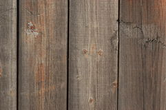Old wood. Vertical for texture Stock Image