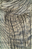 Old wood. Photo of a surface of old wood Stock Photo