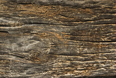 Old wood. Natural old wood texture background Royalty Free Stock Images