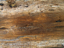 Old wood. Very old wood with bugs Stock Photography