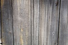 Old wood. Natural backgrounds texture old wood Stock Photo