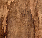 Old wood abstract background Stock Images