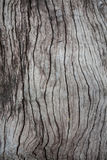 Old wood abstractbackground in thailand Royalty Free Stock Photos