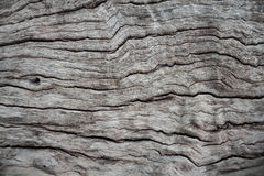 Old wood abstractbackground in thailand Stock Photo