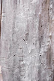 old wood as background  or texture Royalty Free Stock Photos