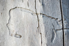 Old wood as background  or texture Stock Photography