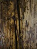 Old wood background Royalty Free Stock Image