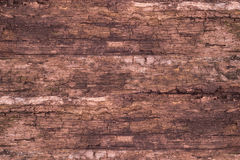 Old wood background. Abstract background, empty template Royalty Free Stock Photos