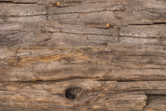 Old wood background. Abstract background, empty template Stock Image