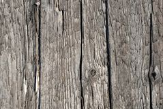 Old wood background. Abstract texture Stock Images
