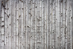 Old wood background. Old wood black pine background Royalty Free Stock Photography