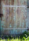 Old wood background door. Grass Royalty Free Stock Photography